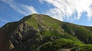 南アルプス高山植物保護!