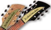 Rickenbacker Fan