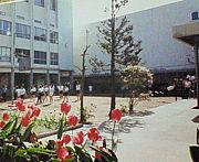 昭和学院小学校 2002年卒業生