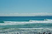 ヌーサで波乗り★サーフィン
