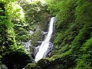 景勝 野鹿の滝