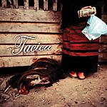tacica ○東北○