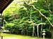 京のお庭日和 (京都)