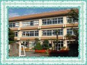 柏市立柏第七小学校