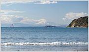 ☆逗子海岸☆海の家♪♪