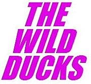 THE WILD DUCKS(チーム悪ダク)