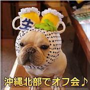 沖縄県北部飲み会!【オフ会】
