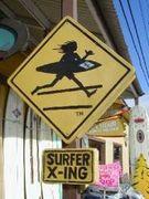 Surf-n-Sea が好きな人