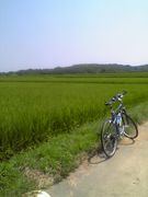 名古屋自転車ツーキニスト友の会