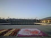玉名高校水泳部