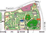 新宿中央公園でジョギング