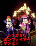 TDS☆ボンファイアーダンス☆