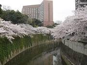 神楽坂から護国寺あたり