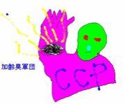 加齢臭軍団『CCP』
