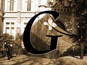 2008年度入学慶應大学法法G組