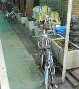 大宮ハーツに自転車で行く