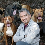 Dog Whisperer・Cesar Millan