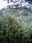 日本の寺・神社