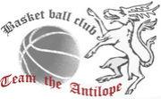 【 Team Antilope 】