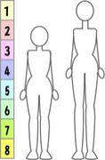 身長166cmの人々