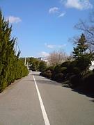 岡崎北高校2010年卒業生