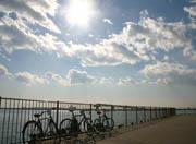 大井町自転車部
