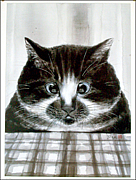 猫の墨絵画家 中浜稔