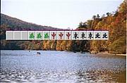 福岡ノーレート麻雀