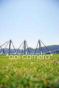 アオイカメラ