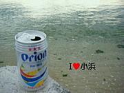 小浜島OB会