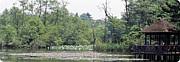 石神井公園を愛する会