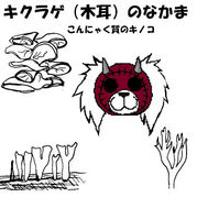 キクラゲ(ドロヘドロ)