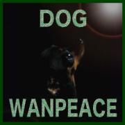 Wanpeace