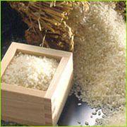 やっぱり米が好き!