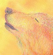 ウルフアート/Wolf Art.