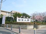 駒澤大学2013年新入生