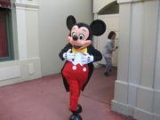 Disney love in 関東