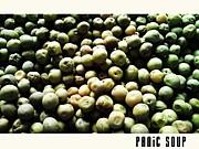 PANiC SOUP