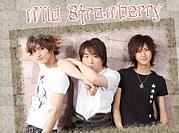 ドラマ 『Wild Strawberry』