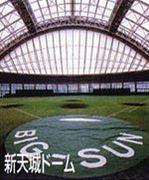 埼玉県ソフトボール