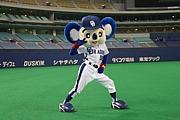 (株)Yoshizawaグループ
