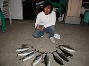 ボードフィシング(sup,wsf)釣り