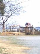 集え!墓地公園
