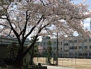 S52年度 那古野小学校卒業生