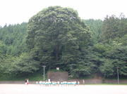 渋川市立西小学校