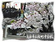 VIVA!!桜中sinceH14〜H18