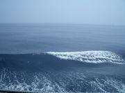 今年の夏は…! 沖縄で!