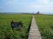 落石岬の会