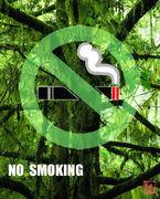煙草を憎んで人を憎まず