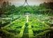 メアリーローズ英国庭園